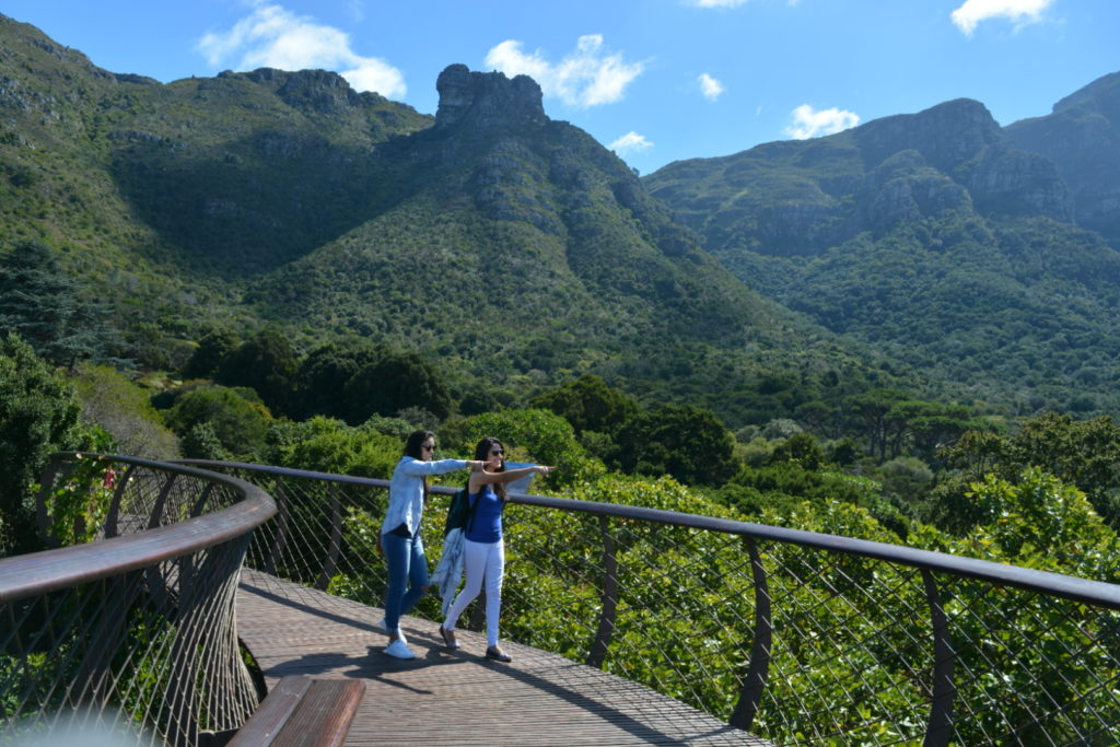 Jardim Botânico da Cidade do Cabo - Tree Canopy Walkway.2